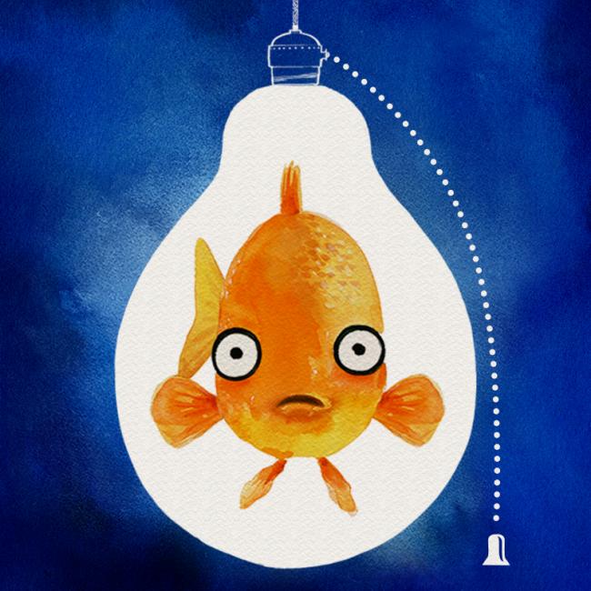 Fish in the Dark - Cast